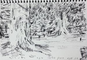 עצים בחניון פורט פיירי