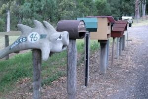 תבות דואר ביער.
