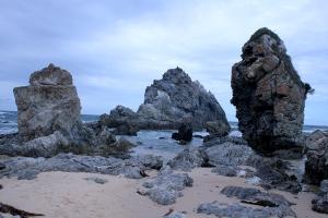 עוד סלע הגמל